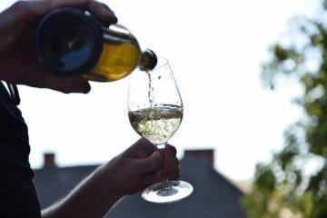 vin-glas-livet-med-gigt-alkohol-fest